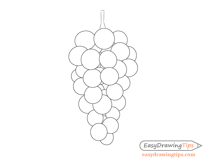 how to draw a grape grapes coloring fall pinterest doodles drawings and grape how to a draw