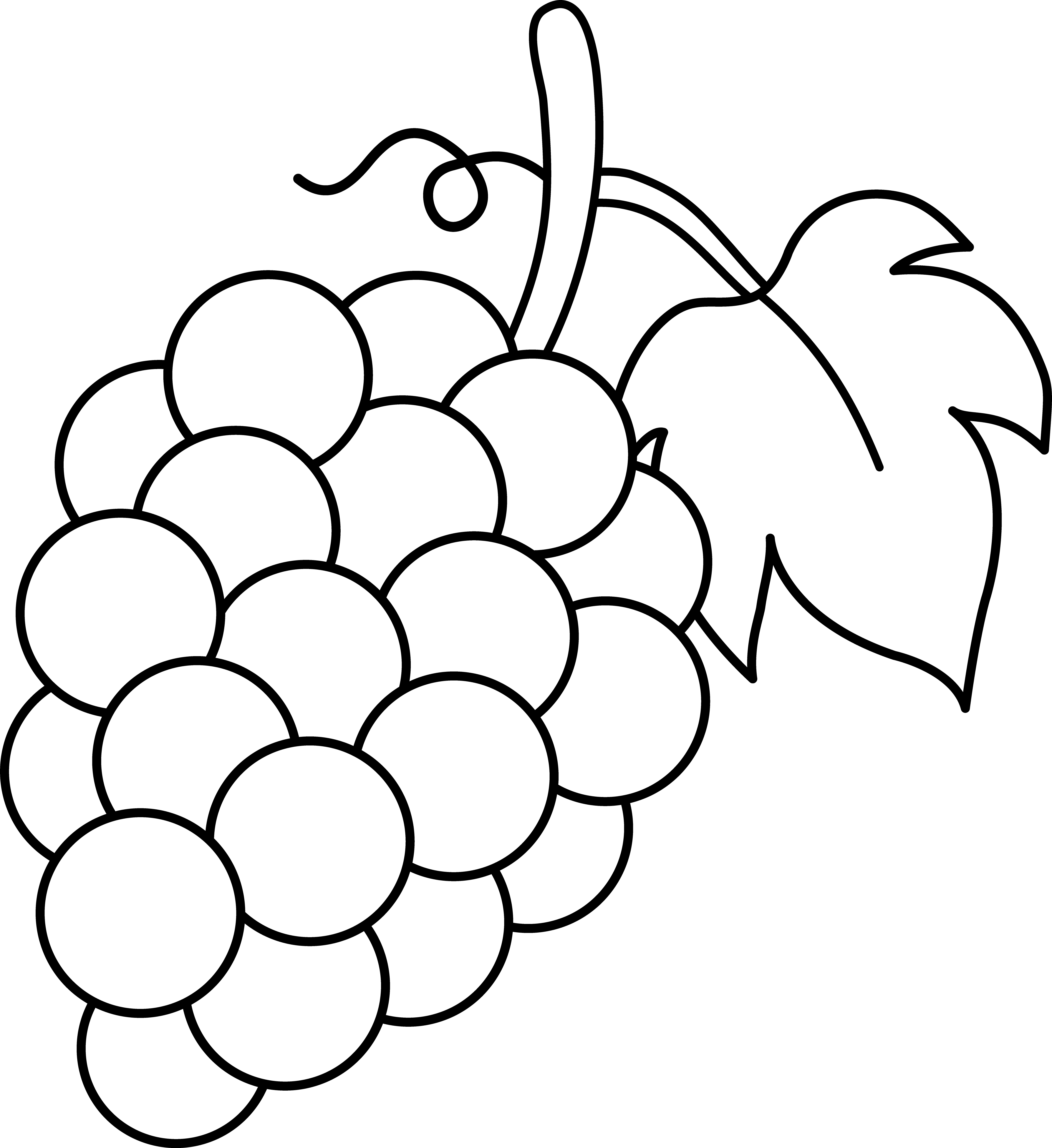 how to draw a grape healthy fruit grapes coloring pages color luna a how grape draw to