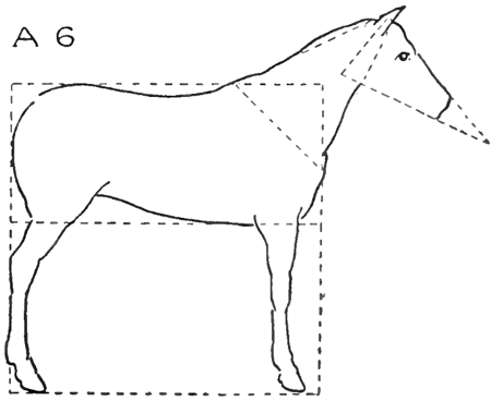 how to draw a horse standing up friesian horse drawing at getdrawings free download draw standing to a horse how up