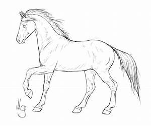 how to draw a horse standing up horse line drawing free download on clipartmag how standing up a draw to horse