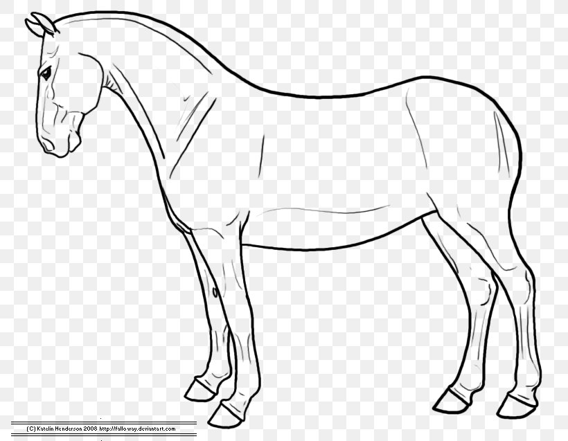 how to draw a horse standing up horse on hind legs drawing at getdrawings free download a draw standing horse how to up