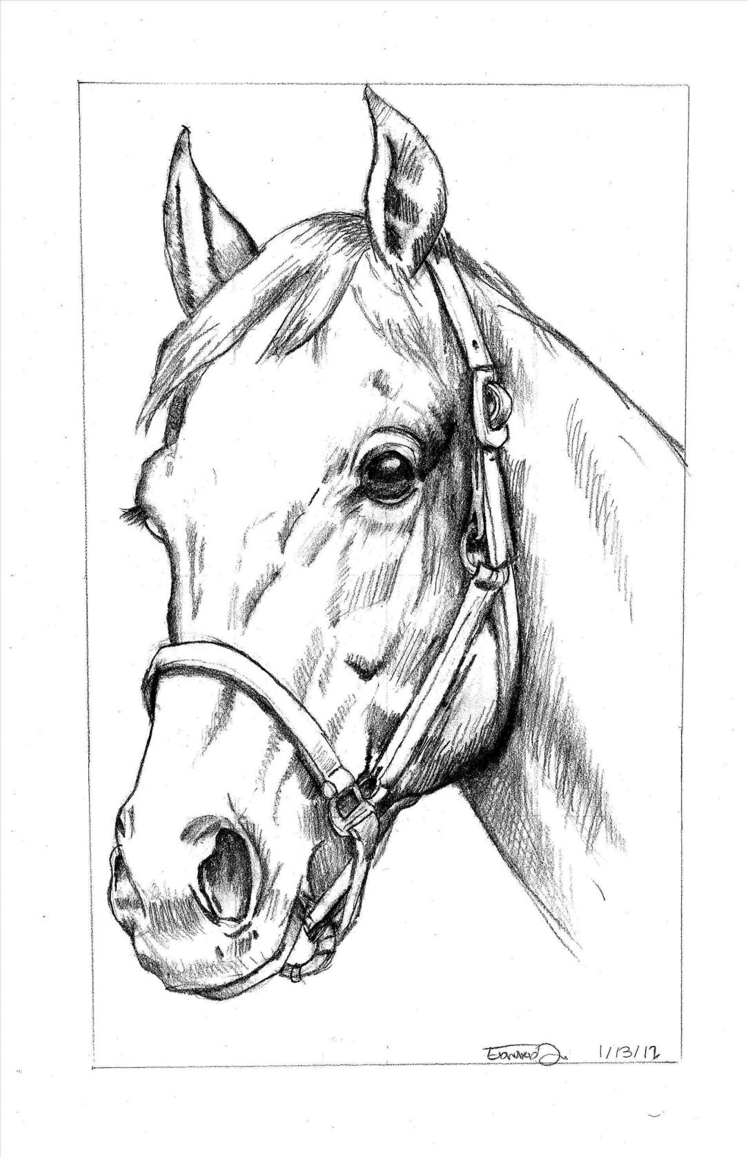 how to draw a horse standing up horses feeding drawing stock illustration illustration of up how draw horse standing a to