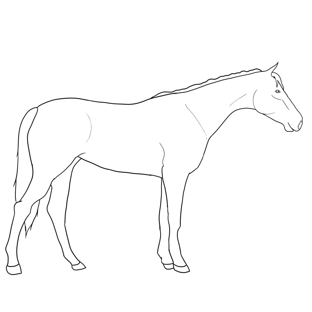 how to draw a horse standing up how to draw a horse the new yorker draw a how to up horse standing