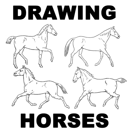how to draw a horse standing up how to draw a horse tutorials that beginners should check out standing how horse to a draw up