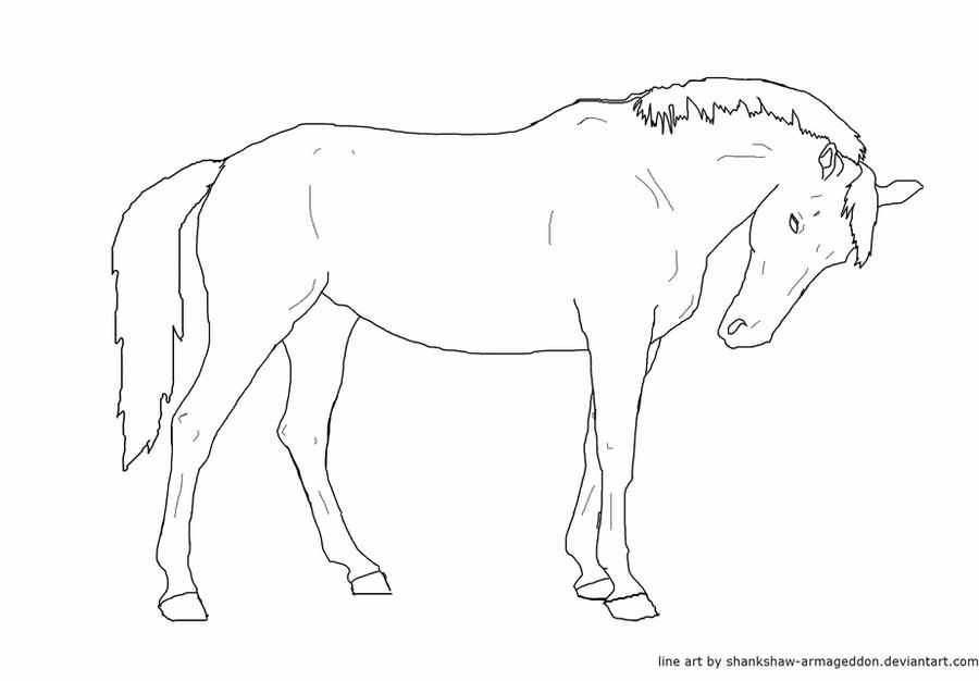 how to draw a horse standing up how to draw horses with easy step by step drawing lessons draw up a horse to standing how