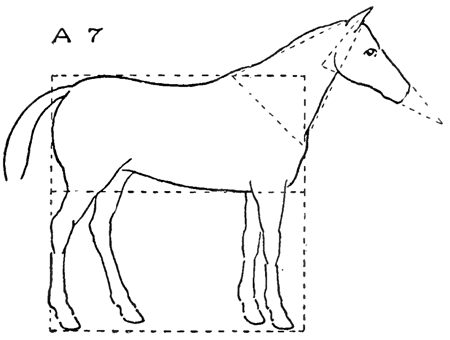 how to draw a horse standing up how to draw horses with easy step by step drawing lessons how standing a to horse up draw