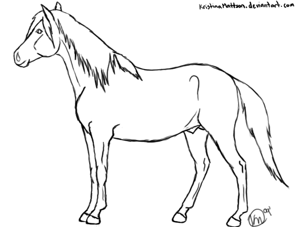 how to draw a horse standing up standing horse drawing at getdrawings free download how draw up standing a to horse