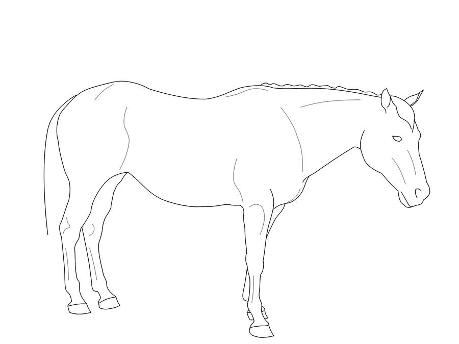 how to draw a horse standing up standing horse line art by shankshaw armageddon on deviantart to standing up horse a how draw