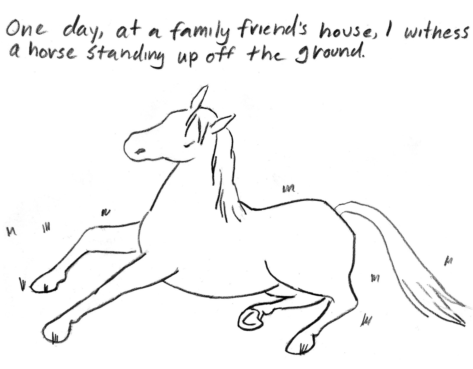 how to draw a horse standing up standing horse lines by avalonsparkles on deviantart draw up to horse standing a how