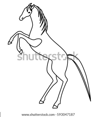how to draw a horse standing up standing horse outline google search for hero draw standing how horse to a up