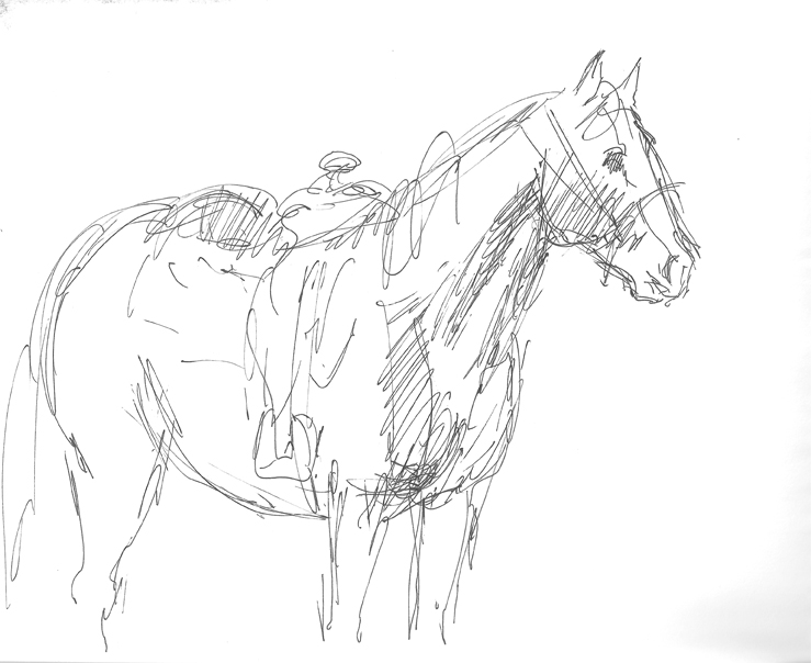 how to draw a horse standing up standing horse vector colourbox how horse up a to draw standing