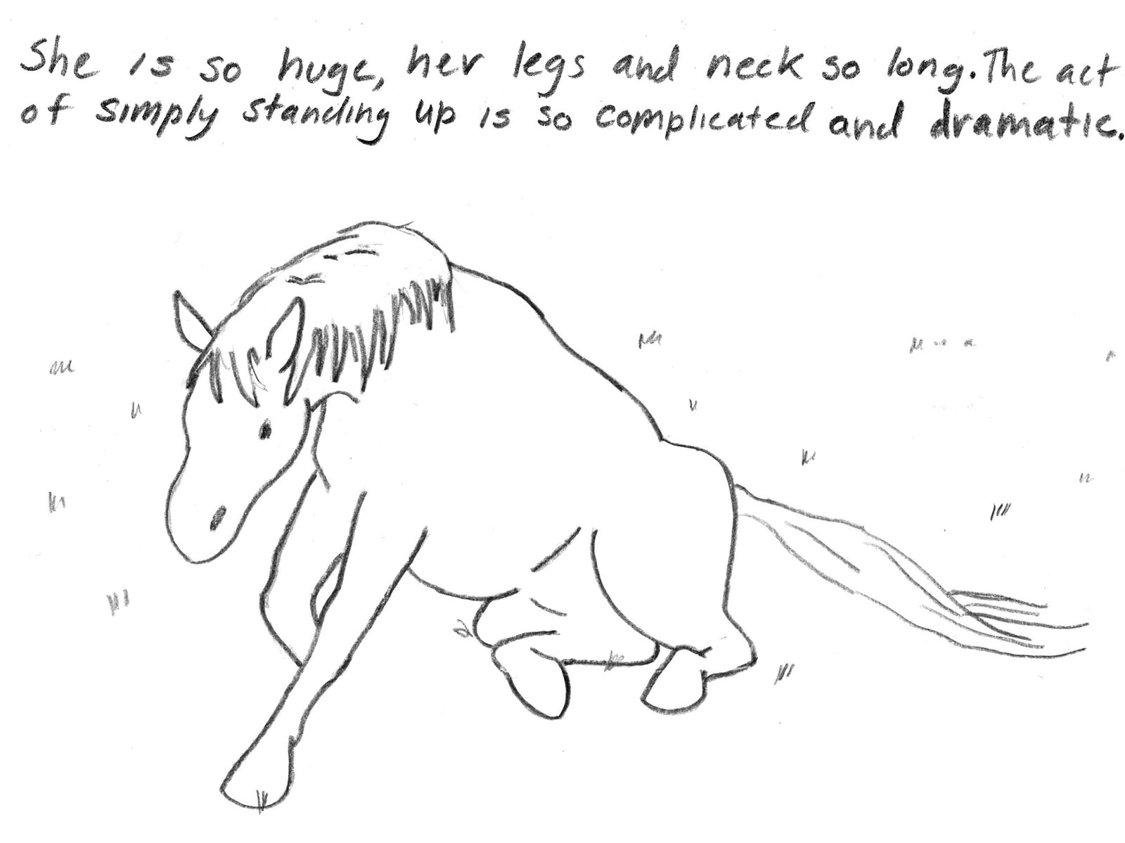 how to draw a horse standing up walking horse lineart by fee ji on deviantart draw standing up how a to horse