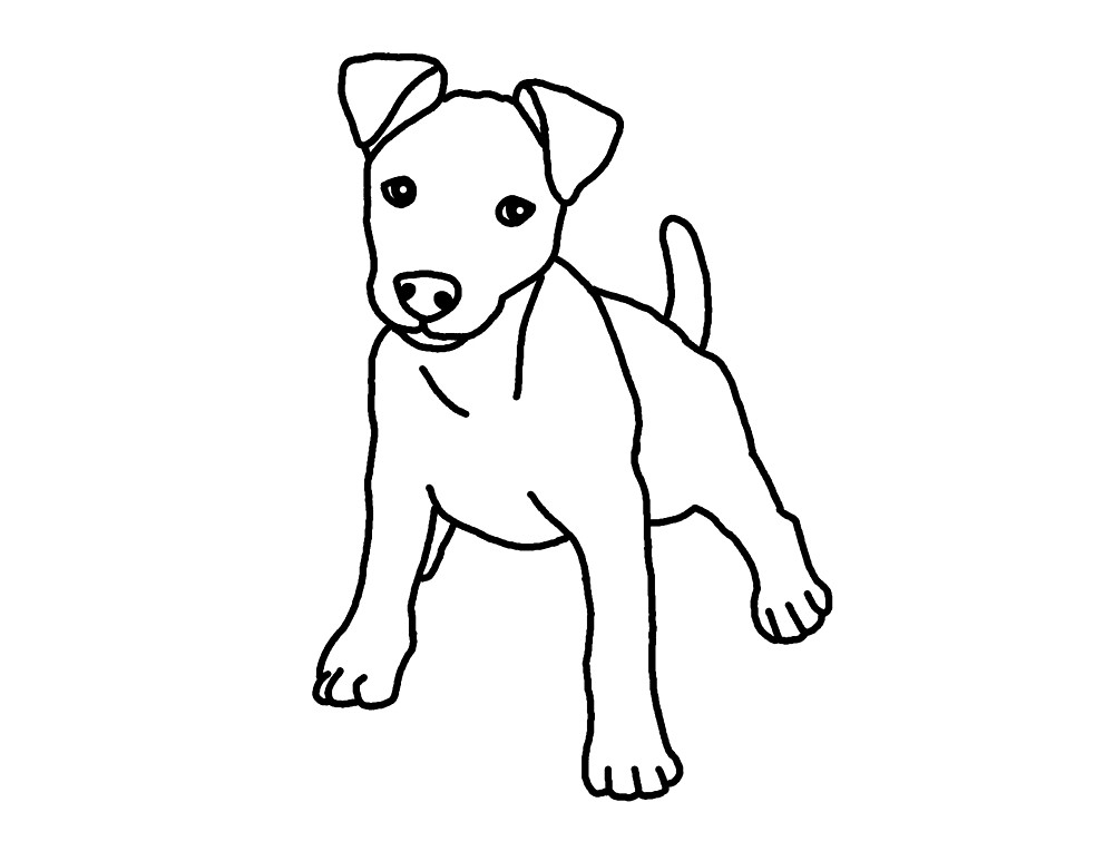 how to draw a jack russell commission jack russell terrier by captured in pencil on a jack russell draw how to