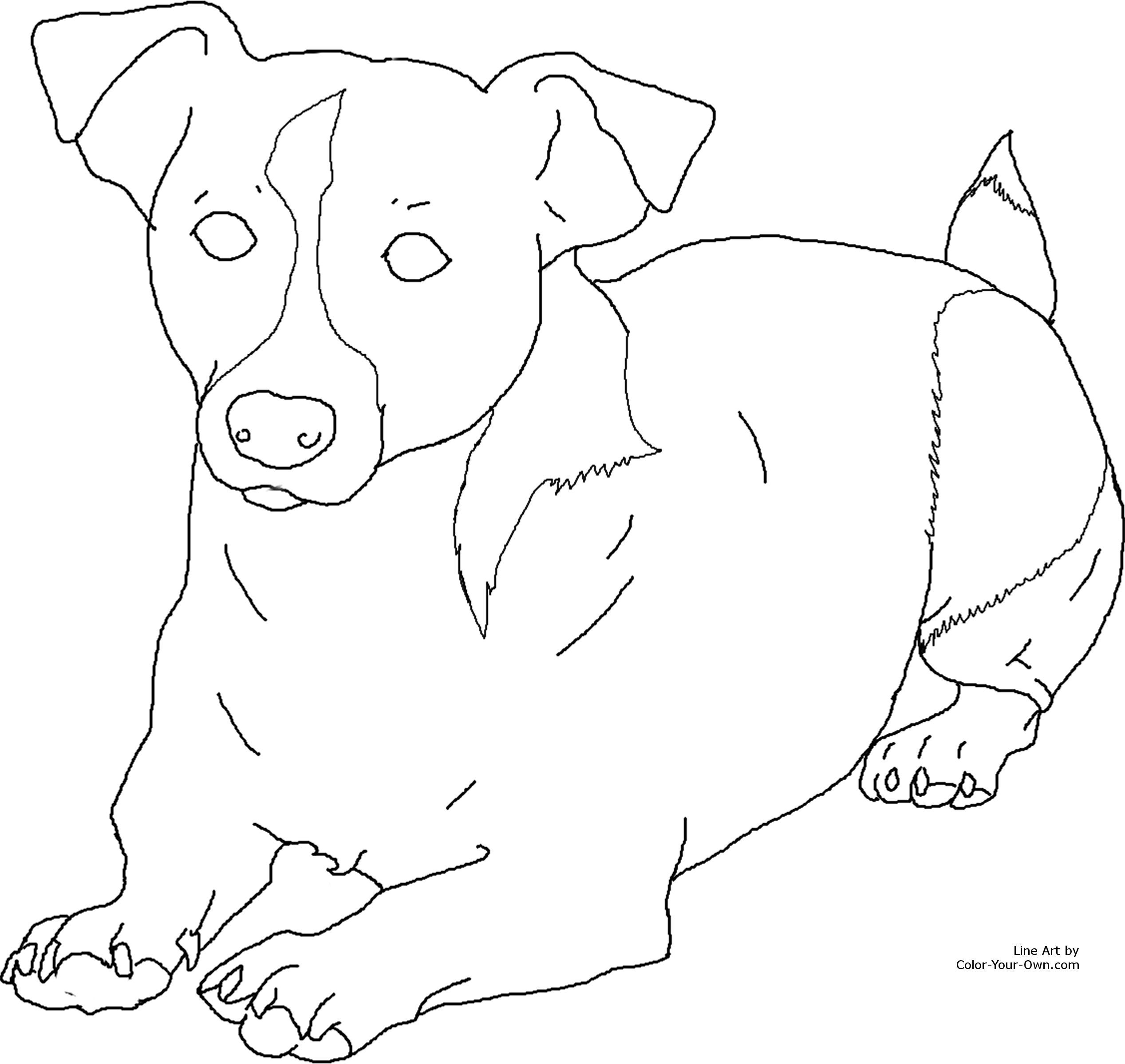 how to draw a jack russell how to draw a jack russell terrier dog my how to draw russell jack how to a draw