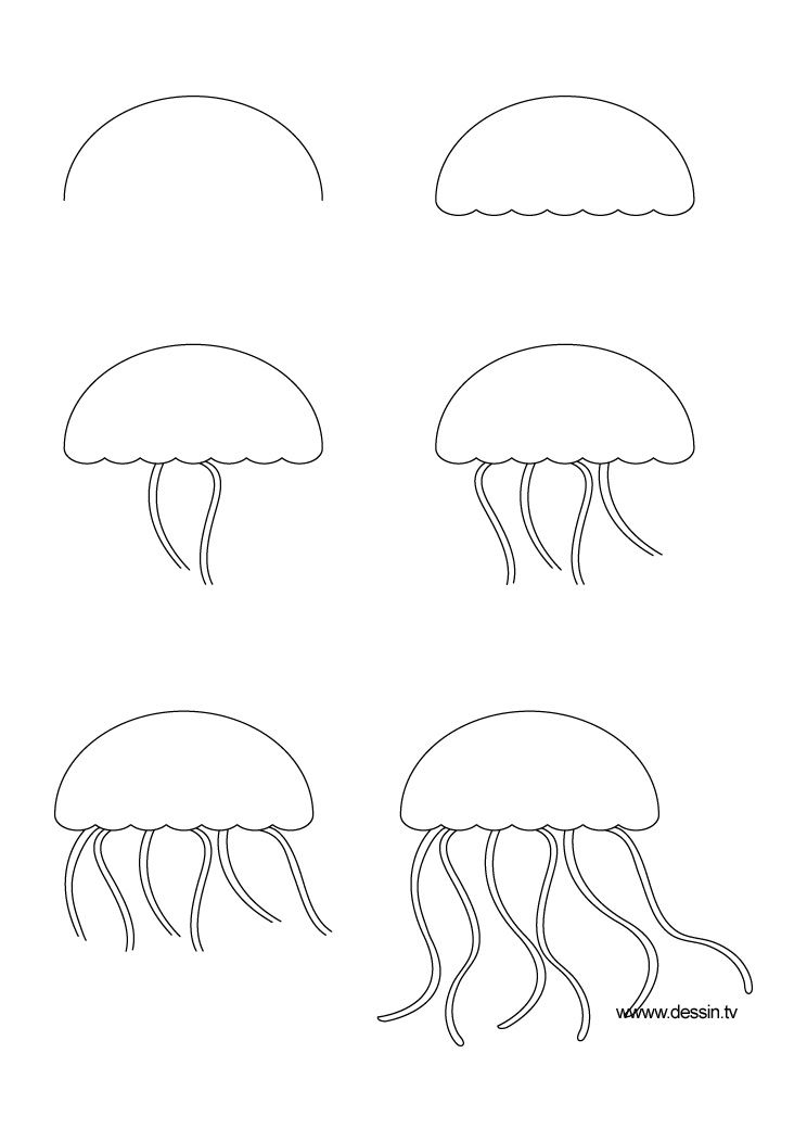how to draw a jellyfish step by step jellyfish coloring pages jellyfish are simple living by how to draw a step jellyfish step
