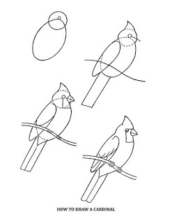 how to draw a pigeon step by step art at becker middle school practice drawing birds step how draw a to pigeon by step