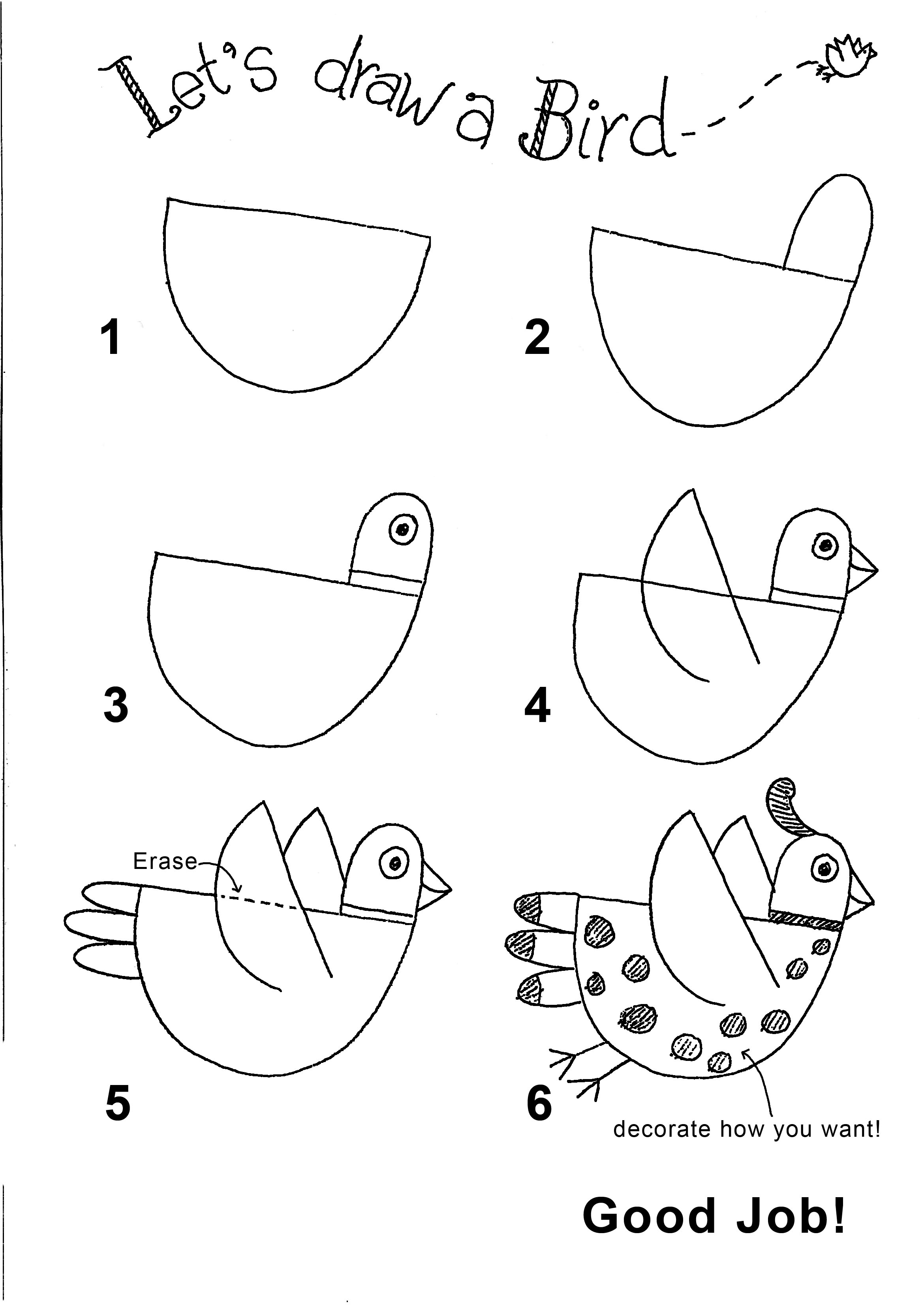 how to draw a pigeon step by step draw a bird draw with rich a step draw pigeon to by how step