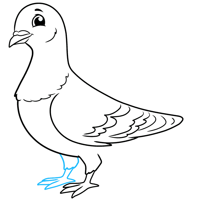 how to draw a pigeon step by step how to draw a pigeon step by step birds animals free pigeon step to a by draw how step