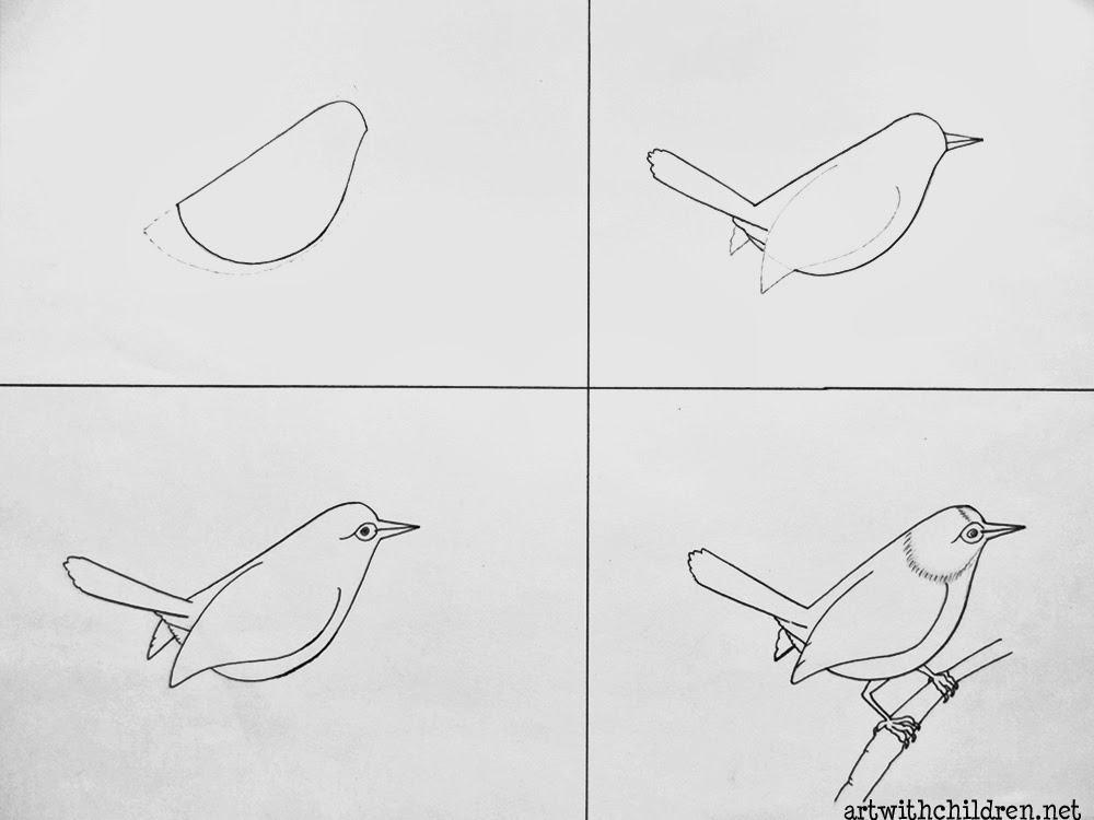how to draw a pigeon step by step tailorbird nest drawing easy to how step draw by step pigeon a