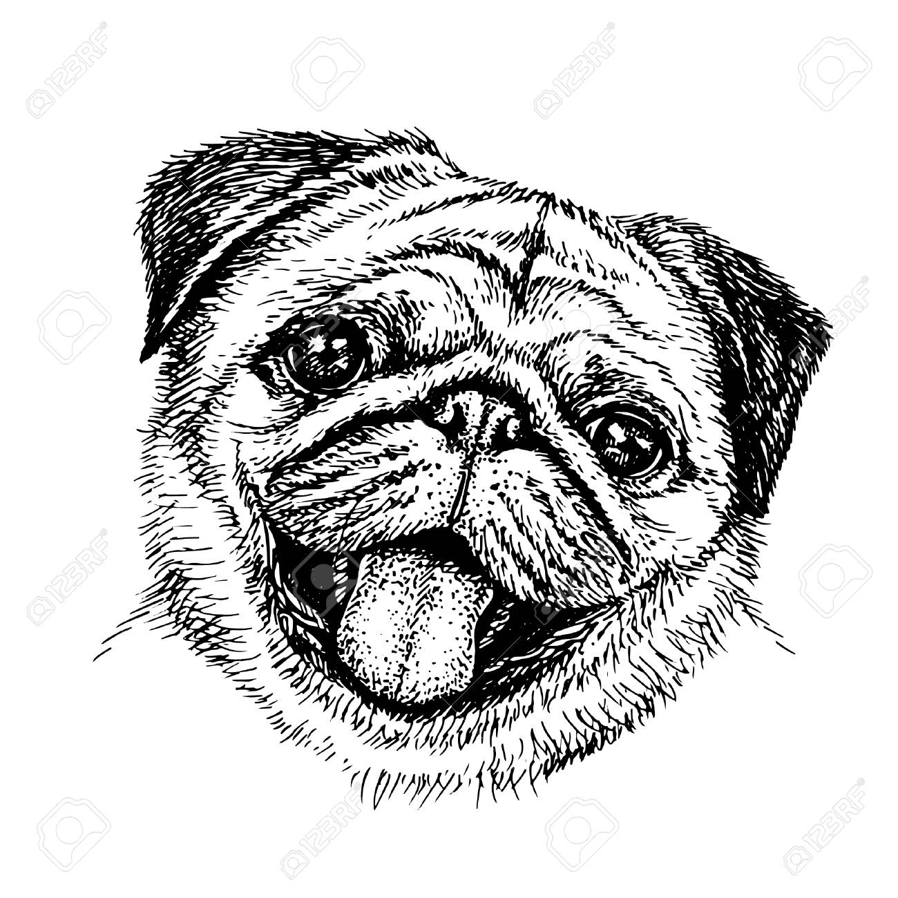 how to draw a pug face 14 best christian lip art images on pinterest clip art how draw to pug a face