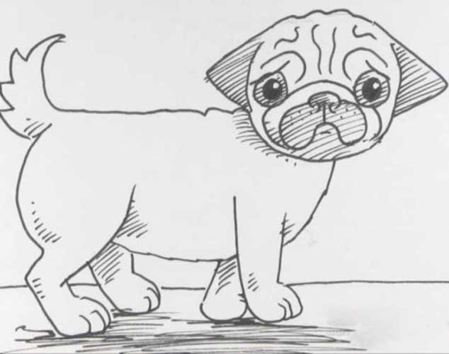 how to draw a pug face how to draw a pug cute very easy and separately his face a how pug draw to face