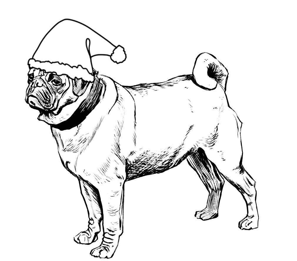 how to draw a pug face pug drawing puppy sketch dog coloring page pug how draw face a to
