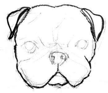 how to draw a pug face pug face drawing at getdrawings free download a draw how to pug face