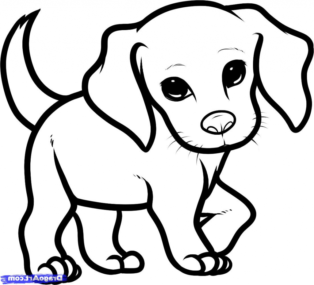 how to draw a pug face pug line drawing free download on clipartmag face a how to pug draw