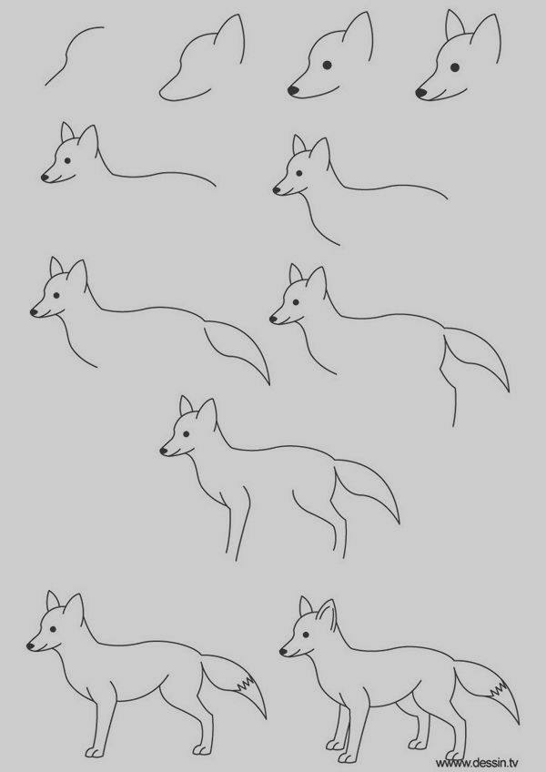 how to draw a realistic cheetah step by step 40 easy step by step art drawings to practice fox step how to cheetah realistic a draw by step