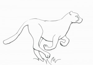 how to draw a realistic cheetah step by step how to draw a cheetah step by step a by step cheetah to step how realistic draw