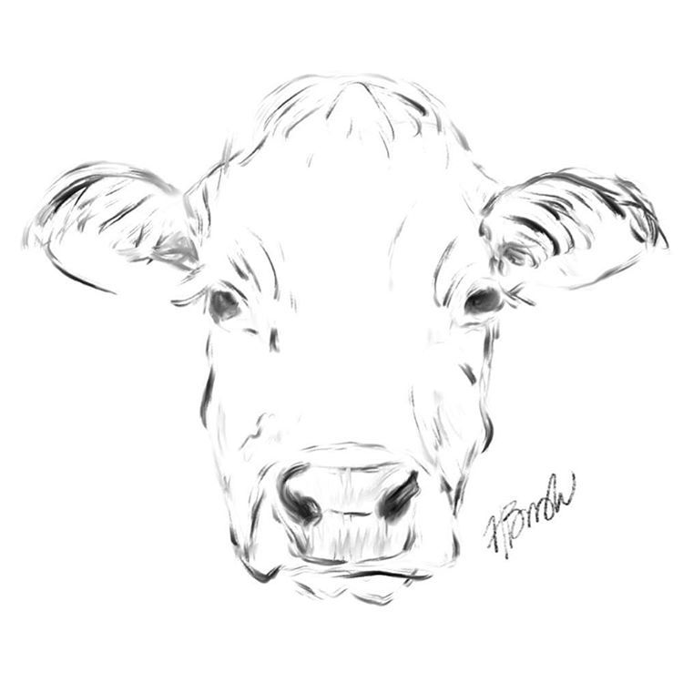 how to draw a realistic cow 3d drawing tutorial how to draw a cow step by step cow to draw realistic a how