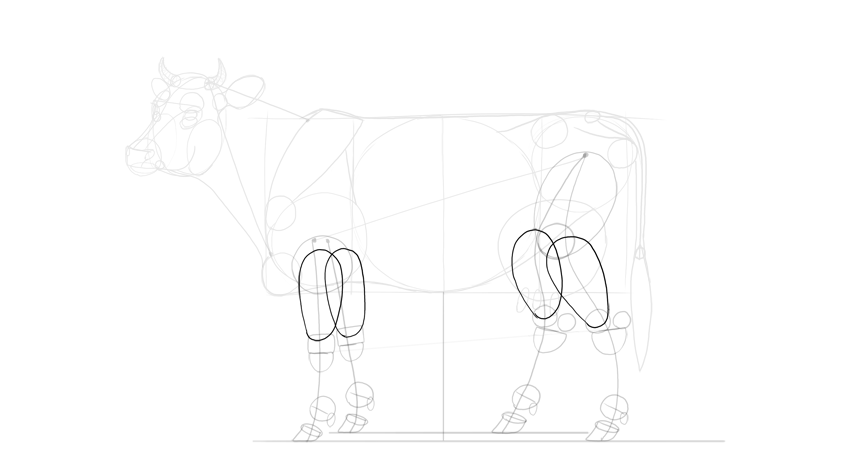 how to draw a realistic cow how to draw a cow cow drawing cow coloring pages cow a how realistic cow draw to