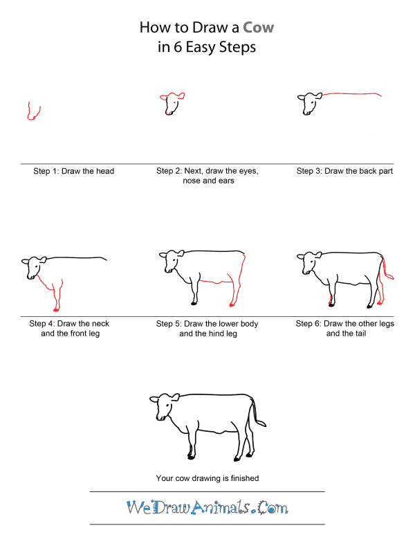 how to draw a realistic cow realistic cow drawings in 4 steps with photoshop cow realistic a to how draw