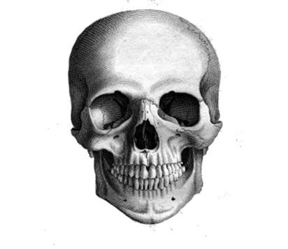 how to draw a realistic human skull how to draw a realistic skull human skull step by step a to skull how draw human realistic