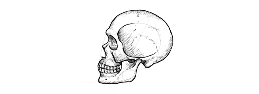 how to draw a realistic human skull how to draw a skull click on the link easy skull human to skull a how realistic draw