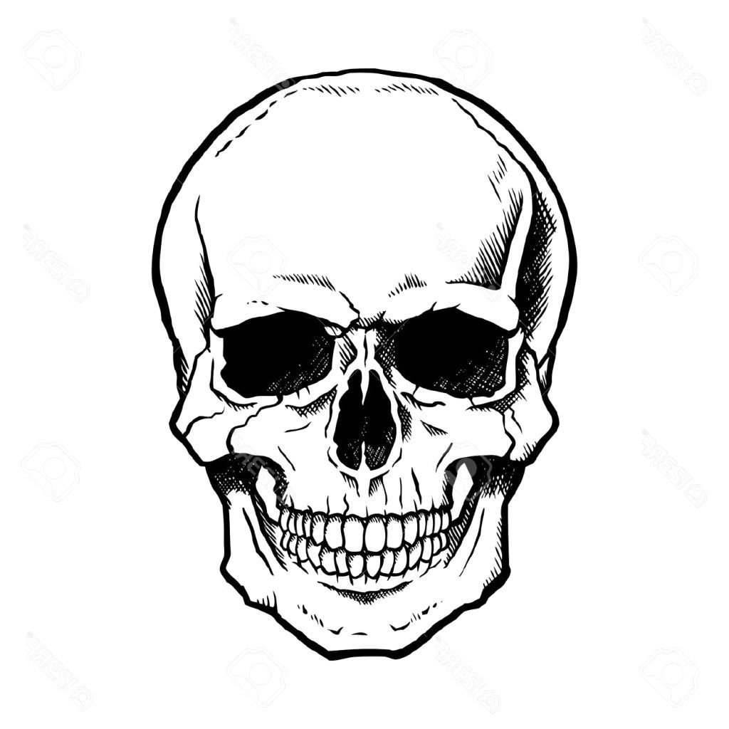 how to draw a realistic human skull httpwwwconceptartorgforumsattachmentphp realistic skull how to draw human a
