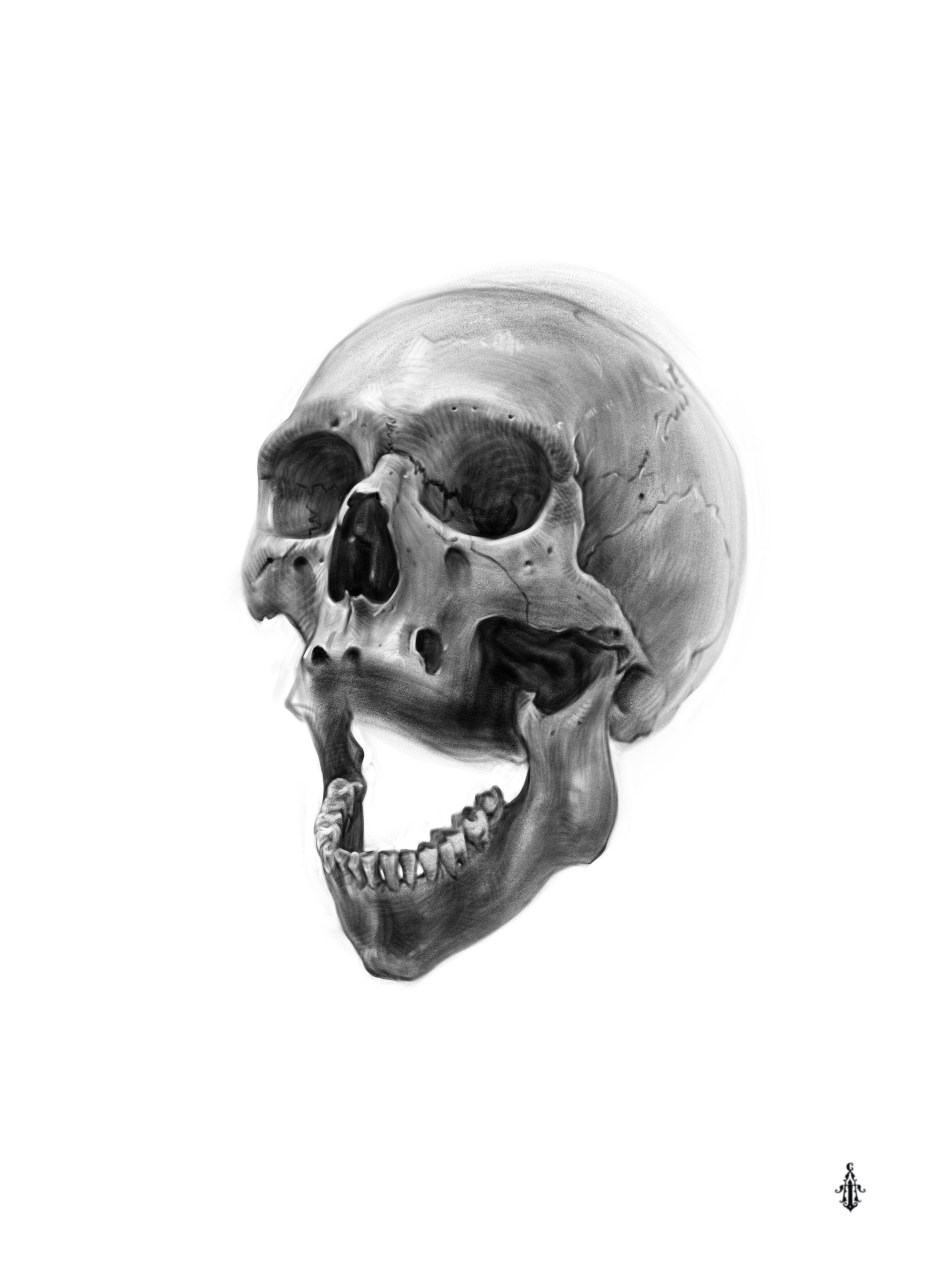 how to draw a realistic human skull pin by vic rivera on bad to the bone skeleton drawings draw a realistic to skull human how