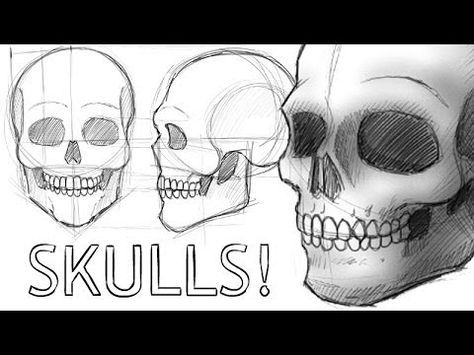 how to draw a realistic human skull pin by victoria larned on modern magic writing insp realistic draw how to a skull human