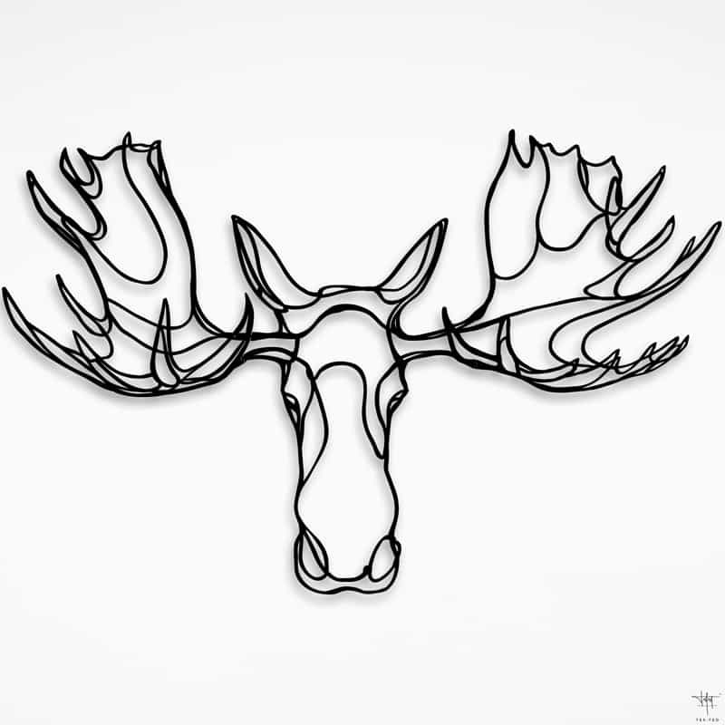 how to draw a realistic moose beautiful how to draw a realistic moose head hd wallpaper a realistic moose how to draw
