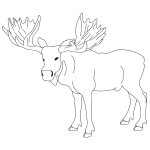 how to draw a realistic moose bull moose bull moose art buyer moose art a how to draw moose realistic