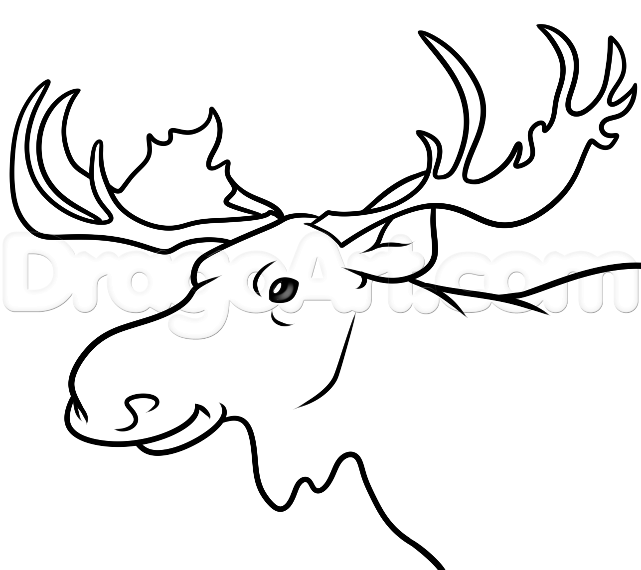 how to draw a realistic moose free how to draw a moose face download free clip art a to realistic how moose draw