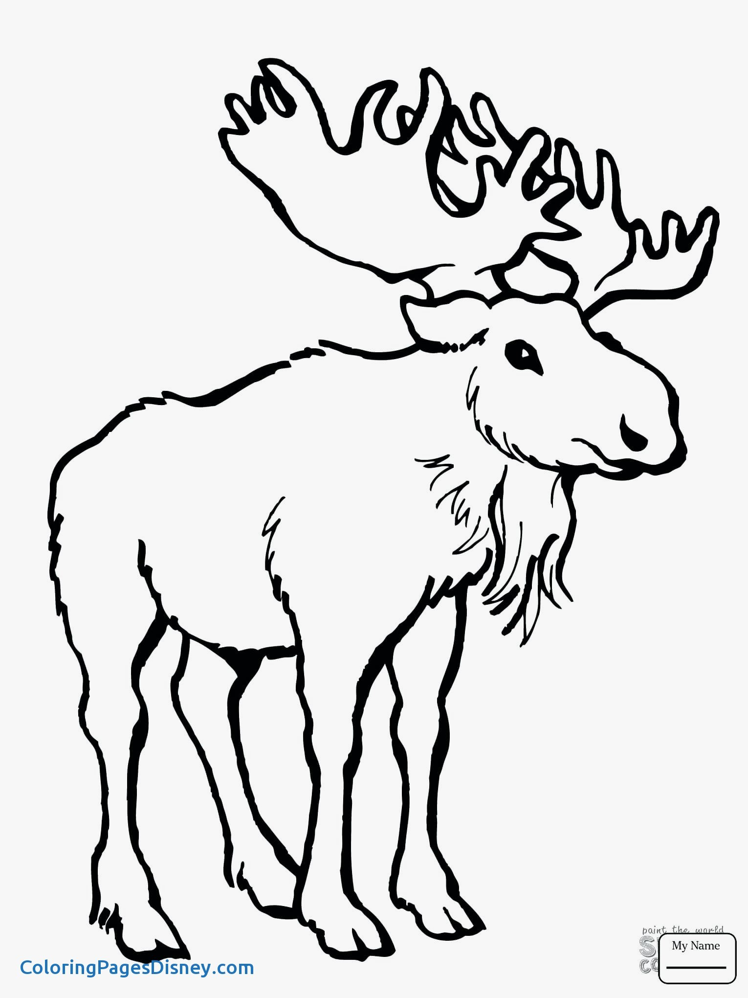 how to draw a realistic moose loud moose animal antlers head cartoon black and a how realistic to moose draw