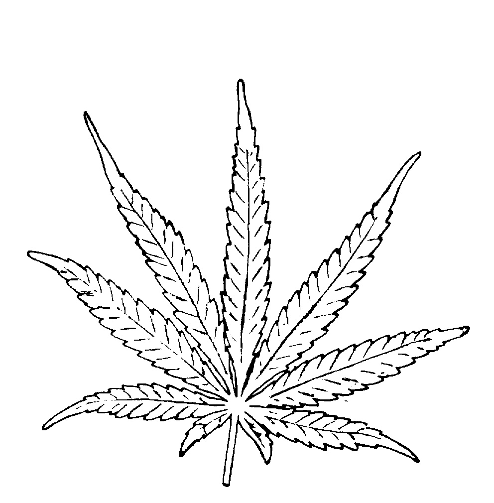 how to draw a simple pot leaf weed leaf drawing step by step at getdrawings free download draw to pot simple leaf how a