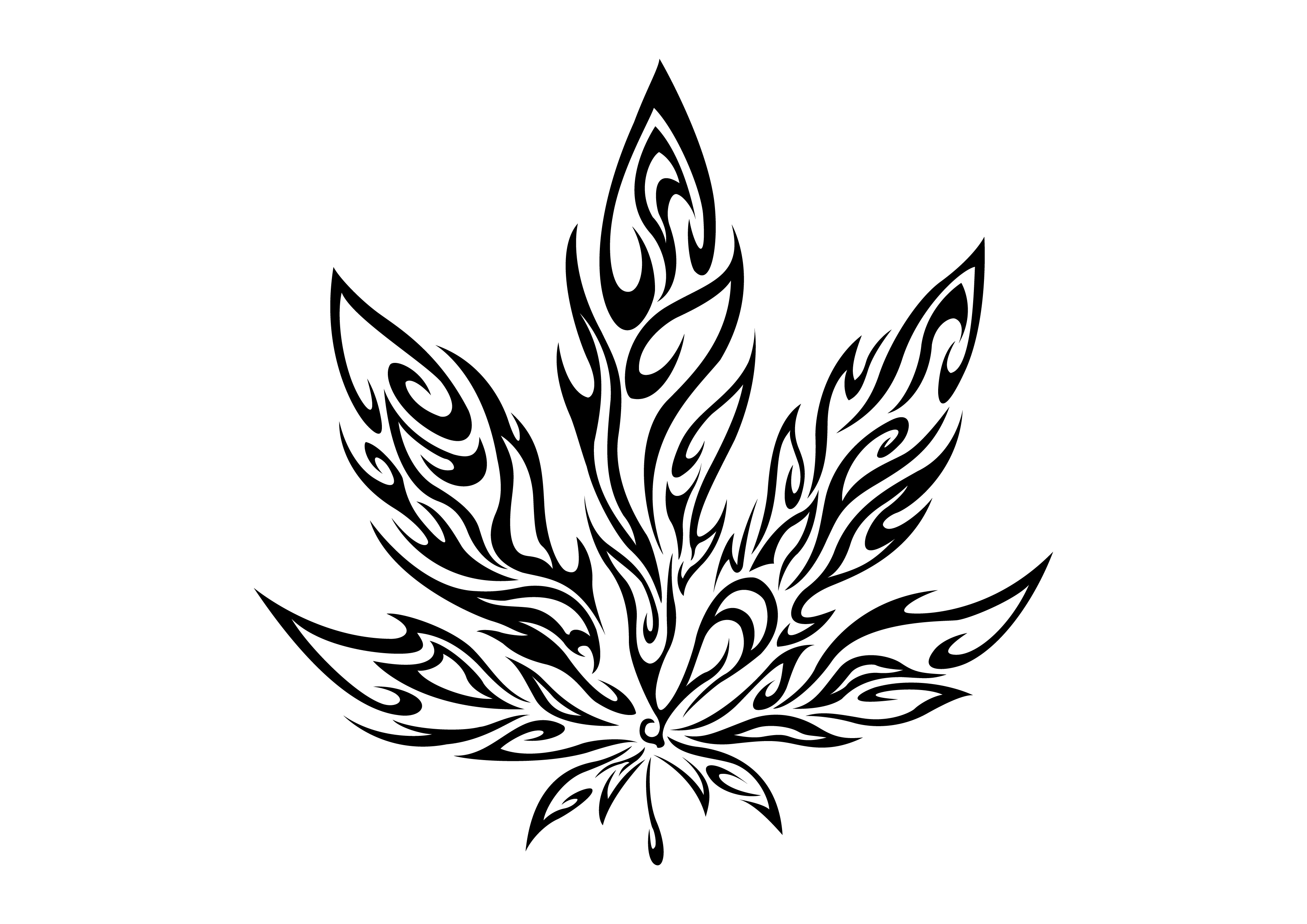 how to draw a simple pot leaf weed leaf drawing tumblr at getdrawings free download leaf simple a draw to pot how
