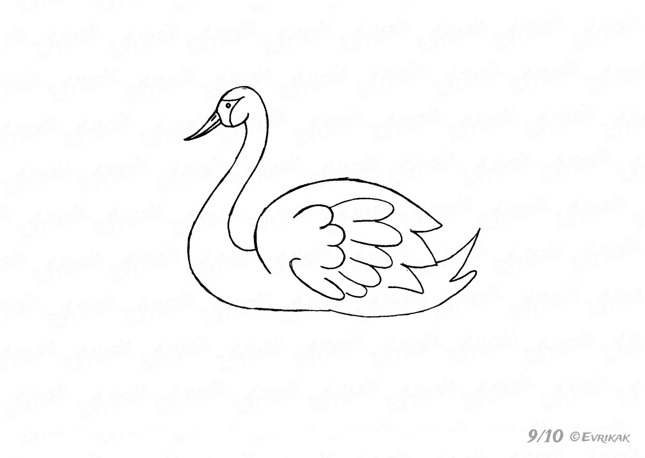 how to draw a swan how to draw a swan in 6 simple steps drawings kids swan to a draw how