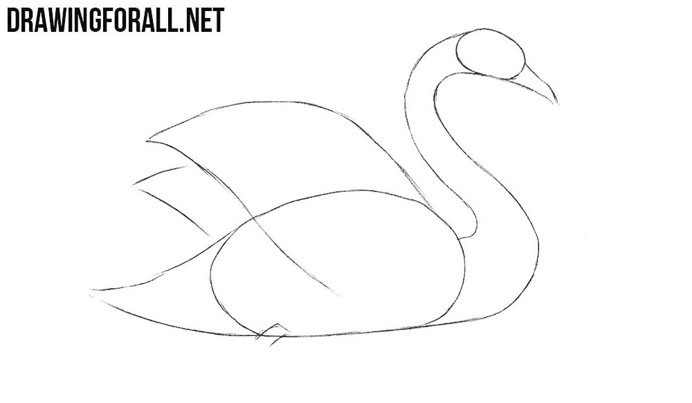 how to draw a swan swan drawing step by step art starts draw to how a swan