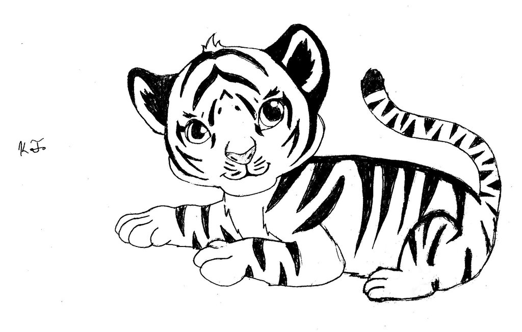 how to draw a tiger baby tiger drawing at getdrawings free download to a draw tiger how