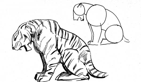 how to draw a tiger black and white tiger drawing free download on clipartmag draw tiger to a how