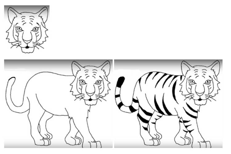 how to draw a tiger easy tiger face drawing how to draw a tiger face to draw tiger how a