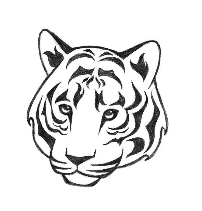 how to draw a tiger image result for how to draw a tiger face step by step how draw tiger to a